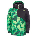 The north face b calisto insulated jacket photo real mountain print