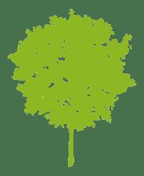 Environment tree